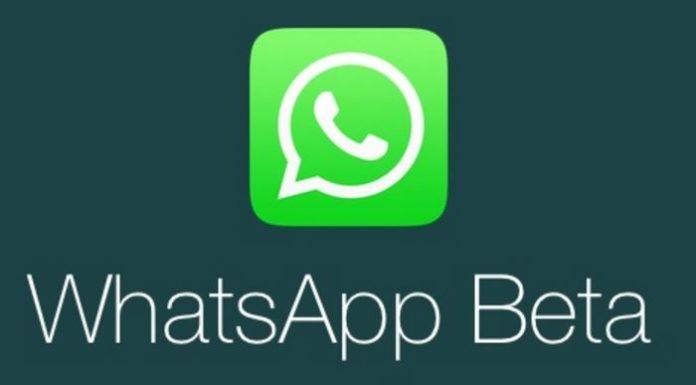 WhatsApp Beta 2.17.93
