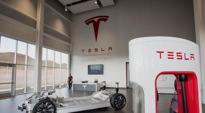 Tesla Gigafactory Martin Tripp